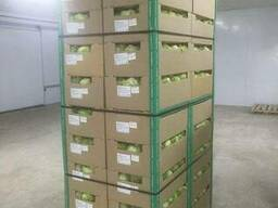 Package and packing of apple - boxes, corrugated boxes, corr - photo 4