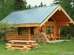 Производим деревянные бани, дома из дерева. - фото 3