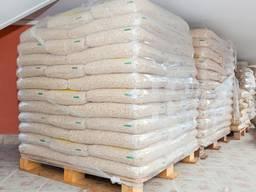 Hot Sales!!! Wood pellets / Premium wood Pellets