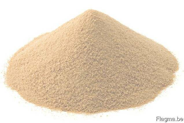 Dry brewer's yeast