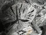 Уголь древесный. Упаковка 3кг - фото 2